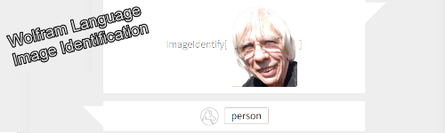 WolframImage